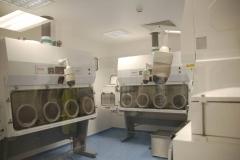 Altnagelvin-Lab-10