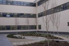 Altnagelvin-Lab-11